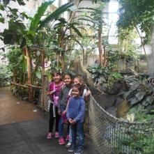 Sortie famille à la ferme aux crocodiles